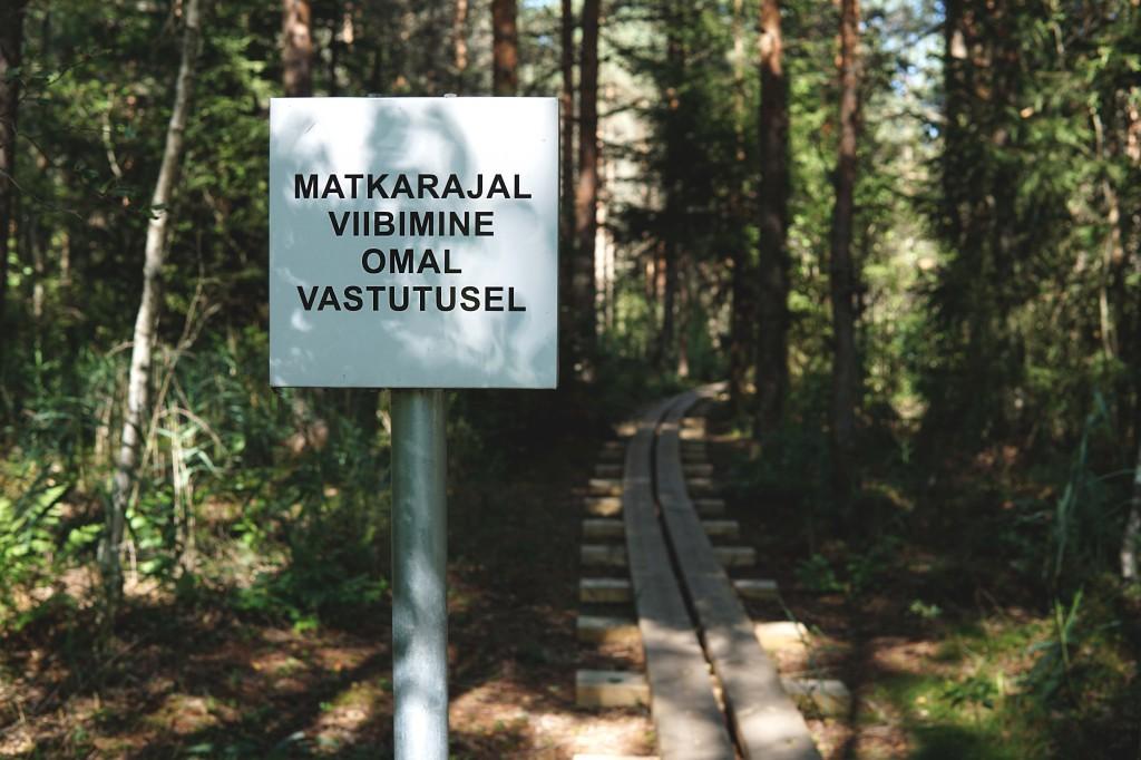 Patika Mädajärve matkarada