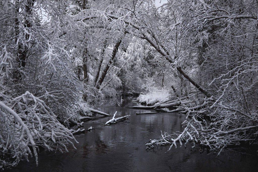 Äntu-Nõmme õpperada, Nõmme jõgi