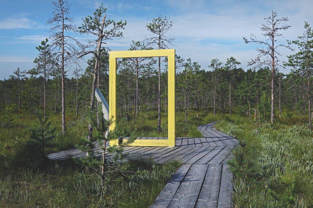 Valgesoo õpperada, National Geographicu kollane aken
