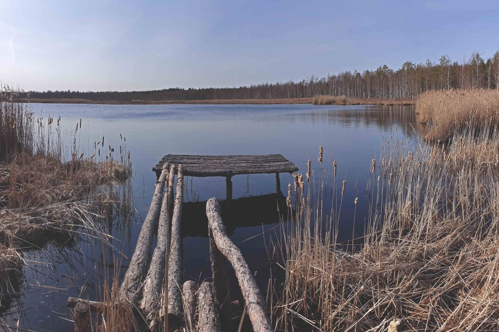 Kadja järv